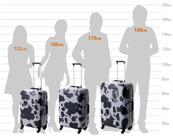 Чемоданы 100 литров женские рюкзаки mojo